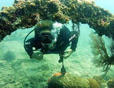 karimunjawa-shipwreck